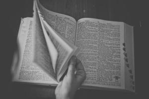 dictionary-698538_1280