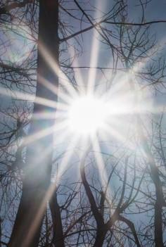 Light (2)
