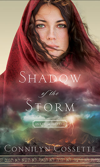 ShadowoftheStorm_mck.indd