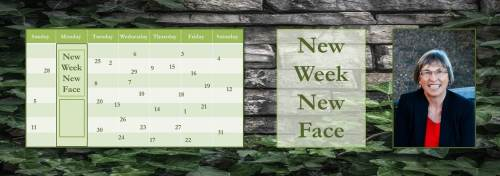 020617-merrillee-whren-new-week-new-face-banner