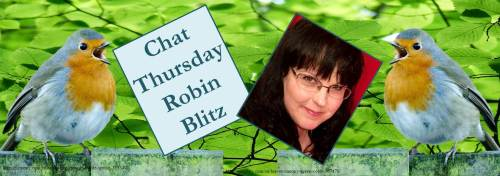 021817-robin-carroll-robin-blitz-feature-banner