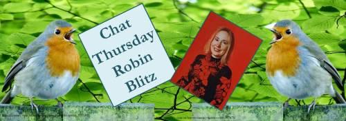 022317-robin-bayne-robin-blitz-feature-banner