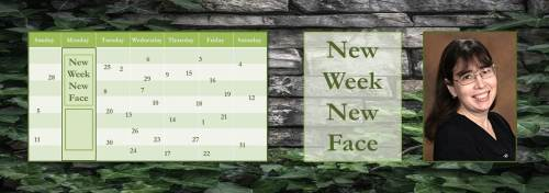 022717-jane-lebak-new-week-new-face-banner