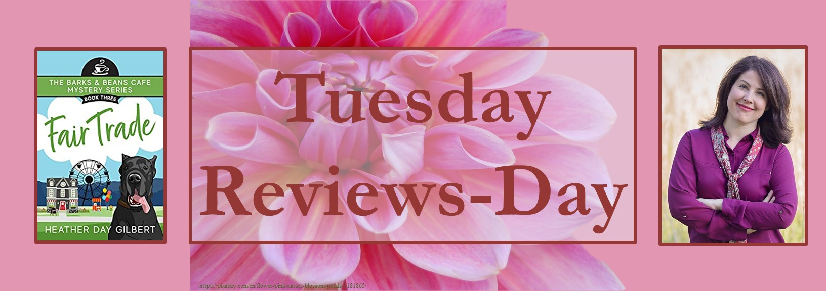 102720- fair trade - tuesday reviews day banner