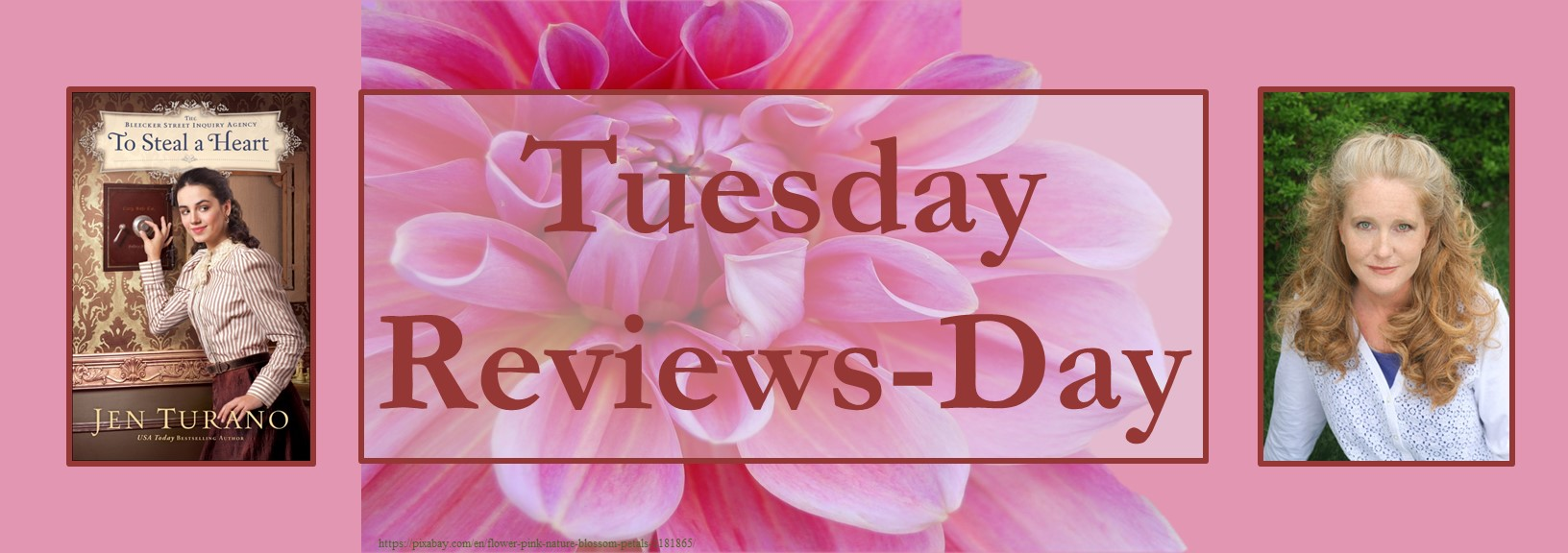 111720 - to steal a heart - tuesday reviews day banner