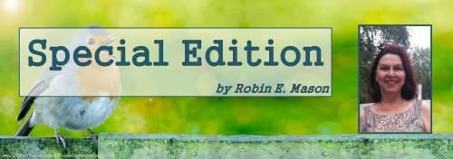 special edition robin bird - blog feature banner