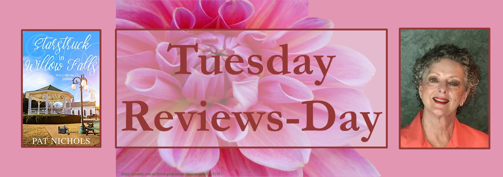 020921 - starstruck in willow falls - tuesday reviews day banner