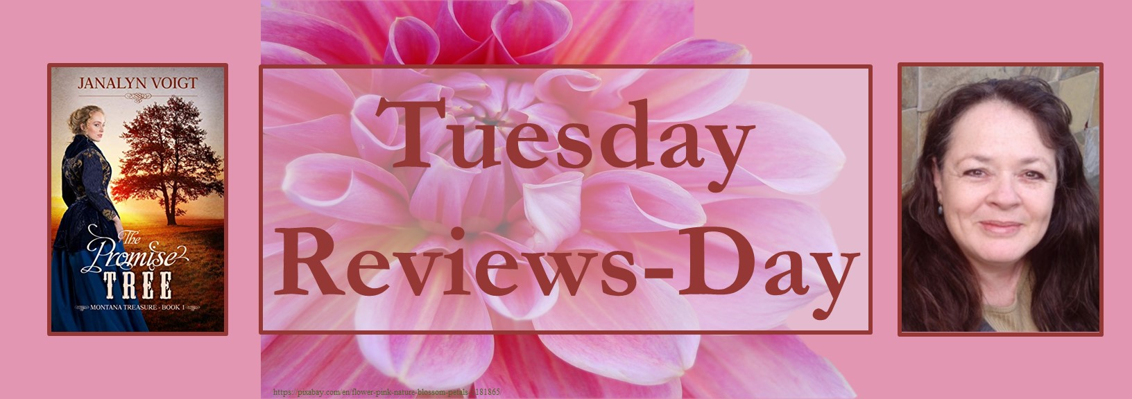052221 - the promise tree - tuesday reviews day banner